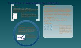 Cristian's Reproduction Labfolio
