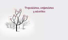 Preposiciones, adverbios y conjunciones