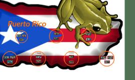 Copy of Puerto Rico