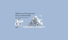 WMX Wilderness Pain Mx