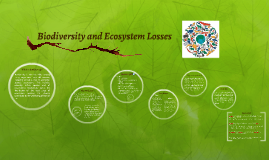 Biodiversity and Ecosystem Losses