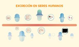 EXCRECIÓN EN SERES HUMANOS
