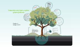 Huerto organico vs huerto fertilizado