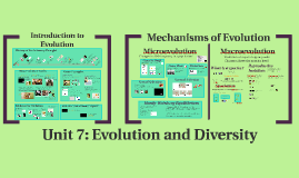 AP Bio: Unit 7: Evolution