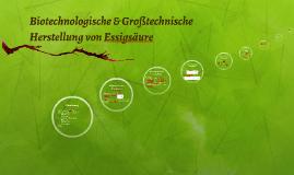 Biotechnologische & Großtechnische Herstellung von Essigsäur