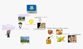 Copy of Connecticut Agriculture