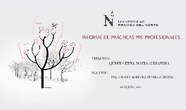 """Copy of """"INFORME DE PRÁCTICAS PRE PROFESIONALES"""""""