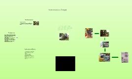 Copy of Deforestacion en Envigado