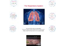 http://blogs.egusd.net/eettalfonso/files/2014/03/lungs-2ivfn