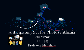 Anticipatory Set for Photosynthesis
