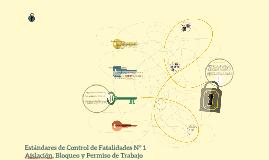 Estándares de Control de Fatalidades N° 1