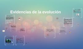 Evidencias de la evoución