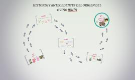 HISTORIA Y ANTECEDENTES DEL ORIGEN DEL OVINO JUNÍN
