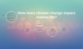 How does climate change impact marine life?
