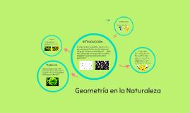 Copy of Geometría en la Naturaleza