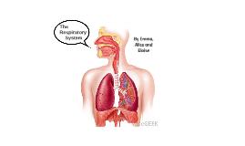 The Respiratory