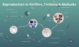 Reproduction in Rotifers, Cnidaria & Molluscs