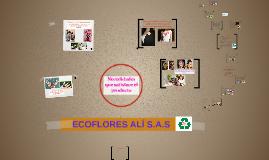 ecoflores ALÍ