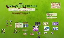 FOLHAS DO CERRADO