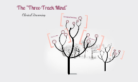 Three Track Mind for Therapists brought in 2017