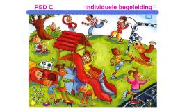 PED C                         Individuele begeleiding