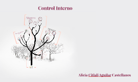 Copy of Copy of Control Interno
