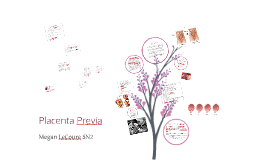 Copy of Placenta Previa