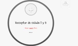 Receptor de Célula T