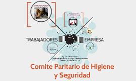Copy of comite paritario de higiene y seguridad