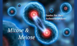Copy of Mitose & Meiose