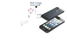 6 Net Lingo