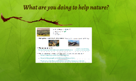 What are you doing to help nature?