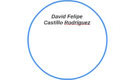 David Felipe Castillo Rodríguez