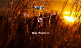 Hera Phaestum.