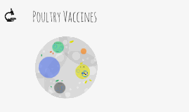 Poultry Vaccines