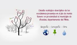 Estudio ecológico descriptivo de los ecosistemas presentes e