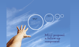 Copy of MLLI proposal: a follow-up component
