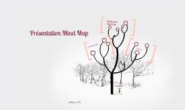 Présentation Mind Map