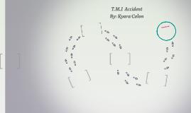 T.M.I  Accident