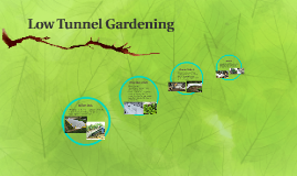 Low Tunnel Gardening