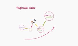 Copy of Metabolismo energético (I) - Respiração celular