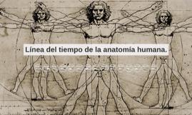 Copy of Línea del tiempo de la anatomía humana.