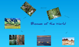 Copy of Biomes of the World