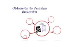 Obtención de Proteína Unicelular utilizando Candida utilis
