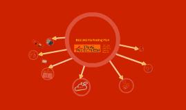 BUS 343 Marketing Plan