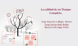 Copy of La calidad de un Tiempo Completo.