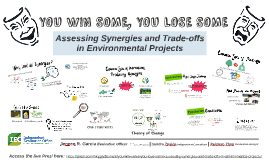 YOU WIN SOME, YOU LOSE SOME: Assessing Synergies and Trade-offs in Environmental Projects