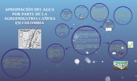 APROPIACIÓN DEL AGUA POR PARTE DE LA AGROINDUSTRIA CAÑERA EN