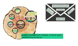 Gurney Elementary School Fit-Play Goal!
