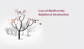 Loss of Biodiversity: